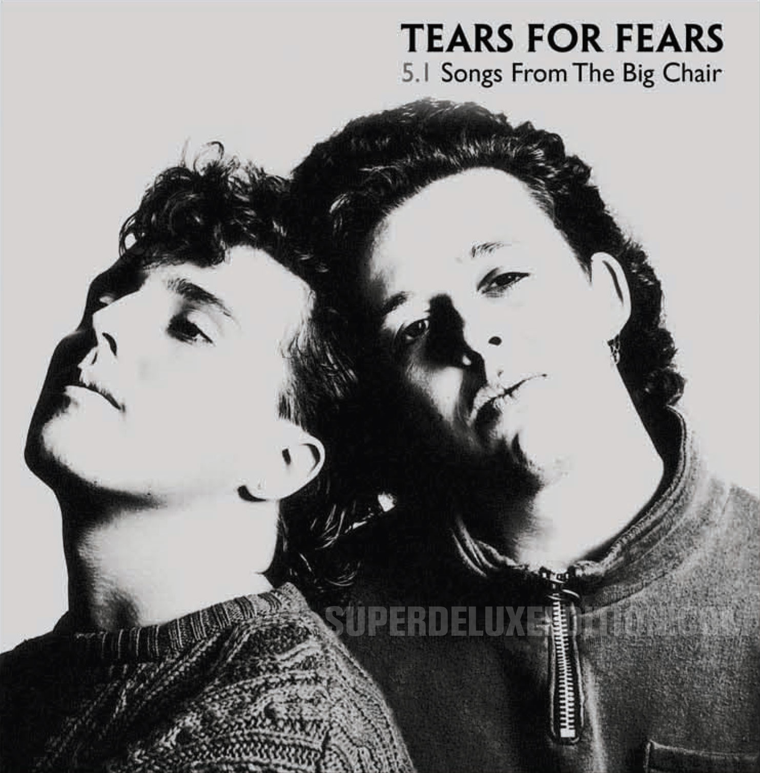 Tears For Fears / Songs From The Big Chair 5.1 disc