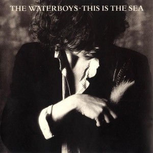 The Waterboys / This Is The Sea / 180g vinyl reissue