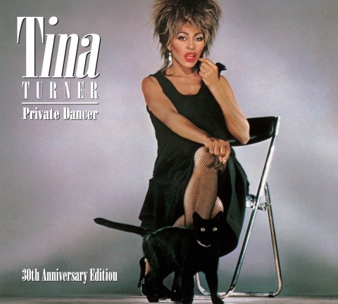Instrumental simply the best tina turner