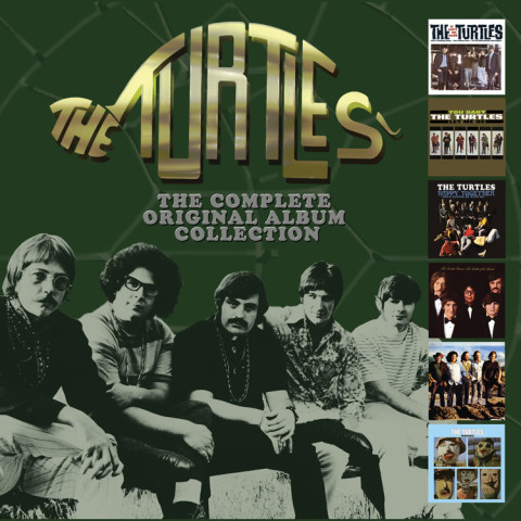turtles_6cdbox