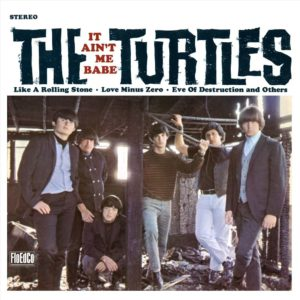 turtles_itaintme