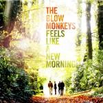 The Blow Monkeys / Feels Like A New Morning