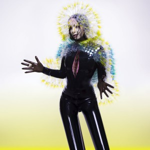 Bjork / Vulnicura special CD packaging