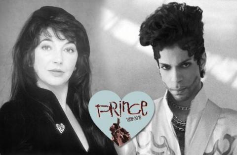 prince_kate